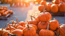 Kürbis ist das Trendgemüse im Herbst – 10 Fakten, die man wissen muss
