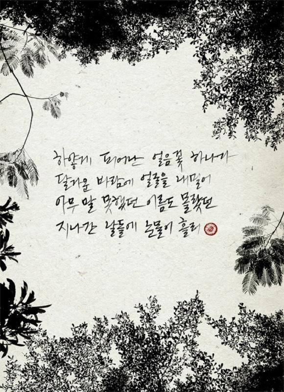 Park Hyo Shin Releases A Part Of Lyrics Wild Flower
