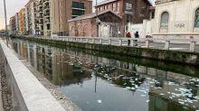 Fiume di banconote da cento euro nei Navigli: mistero a Milano