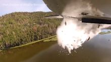 Repoblar los lagos lanzando peces desde aviones