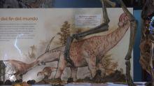 Argentine scientists find new dinosaur species