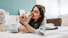 La explicación científica de por qué te gustan los perros: está en tus genes
