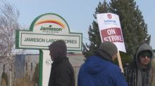 Jamieson Laboratories staff on strike as workers demand higher wages