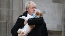 """Elezioni in Gran Bretagna, exit poll: """"Trionfo a valanga di Johnson"""""""