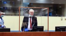 Mladic genocide appeal 'risks miscarriage of justice', lawyers say