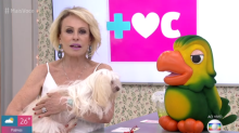 Ana Maria Braga se emociona ao falar de cadela que perdeu a visão