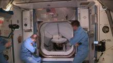 Astronautas de cápsula de SpaceX abordan la Estación Internacional tras acople exitoso