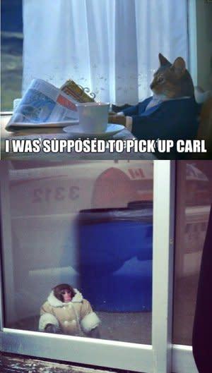 Ikea Monkey Meme Soon Best of Ikea Mo...
