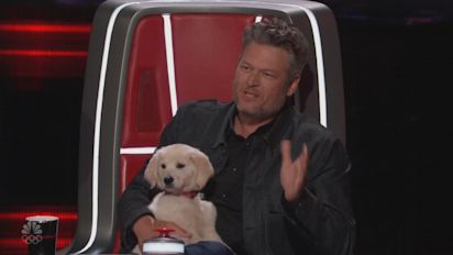 Blake Shelton's puppy ploy didn't stand a chance against Nick Jonas on 'The Voice'