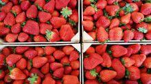 Diese Erfindung verlängert die Haltbarkeit von Obst und Gemüse