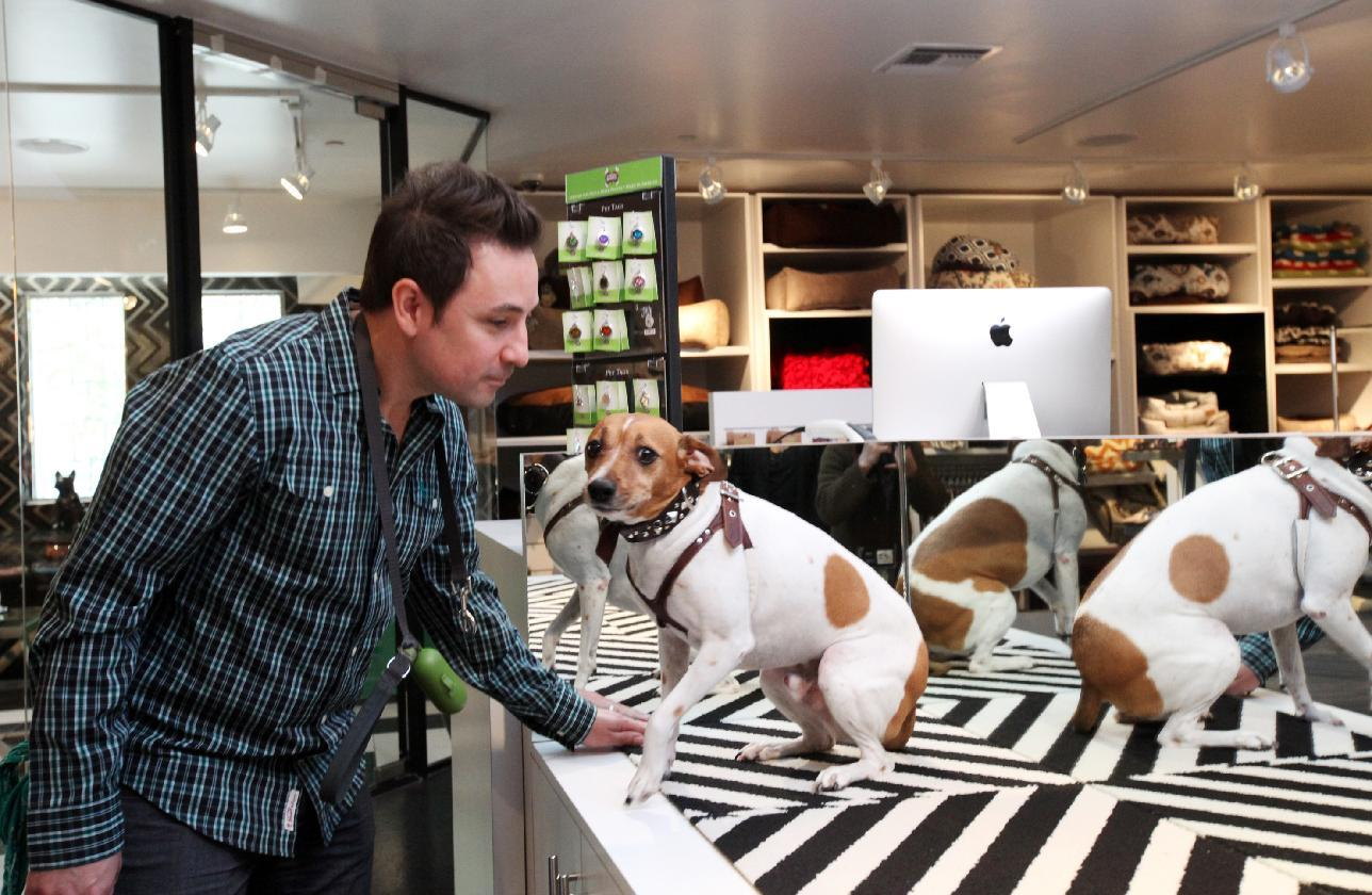 This Jan. 2, 2014, photo shows Rob Gaudio examining Jaxxon at the Pussy & Pooch Pet Lifestyle Center store in Beverly Hills, Calif. The center plays into the trend of over-the-top pet pampering that's become a way of life for many animal lovers. (AP Photo/Nick Ut)