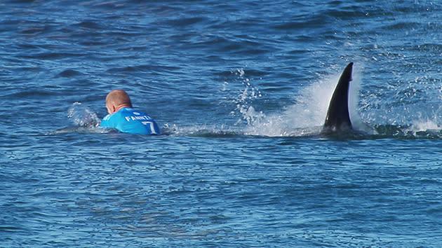 Fanning attack horrific: Surf photographer