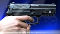 Gun bill would end pistol purchase permits