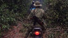 Inside The Criminal Network Ravaging Cambodia's Forests ― And The Community Fighting To Save Them