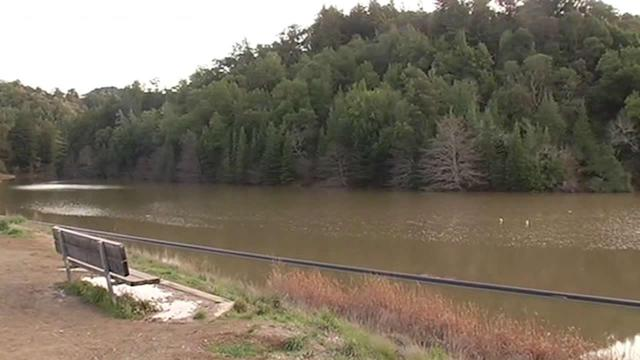Rain helps North Bay's Phoenix Lake