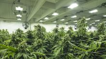 "Aurora Cannabis Lands a ""Prime-Time"" Partnership"