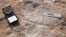 Seven footprints may be the earliest evidence of humans on the Arabian Peninsula