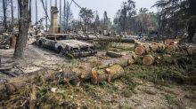Why Black communities need to be 'central' to response to wildfire disasters