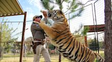 'Tiger King' quiz: Test your knowledge of Joe Exotic and the Netflix series