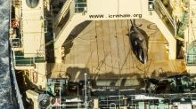 Japan seeks upgraded whaling ship in sign hunts will continue