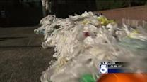 Major City Bans Single-Use Plastic Bags