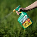 U.S. jury hears more evidence as second phase of Roundup cancer trial begins
