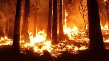 California Utilities Are Upbeat, Wildfire Bill Moves Forward