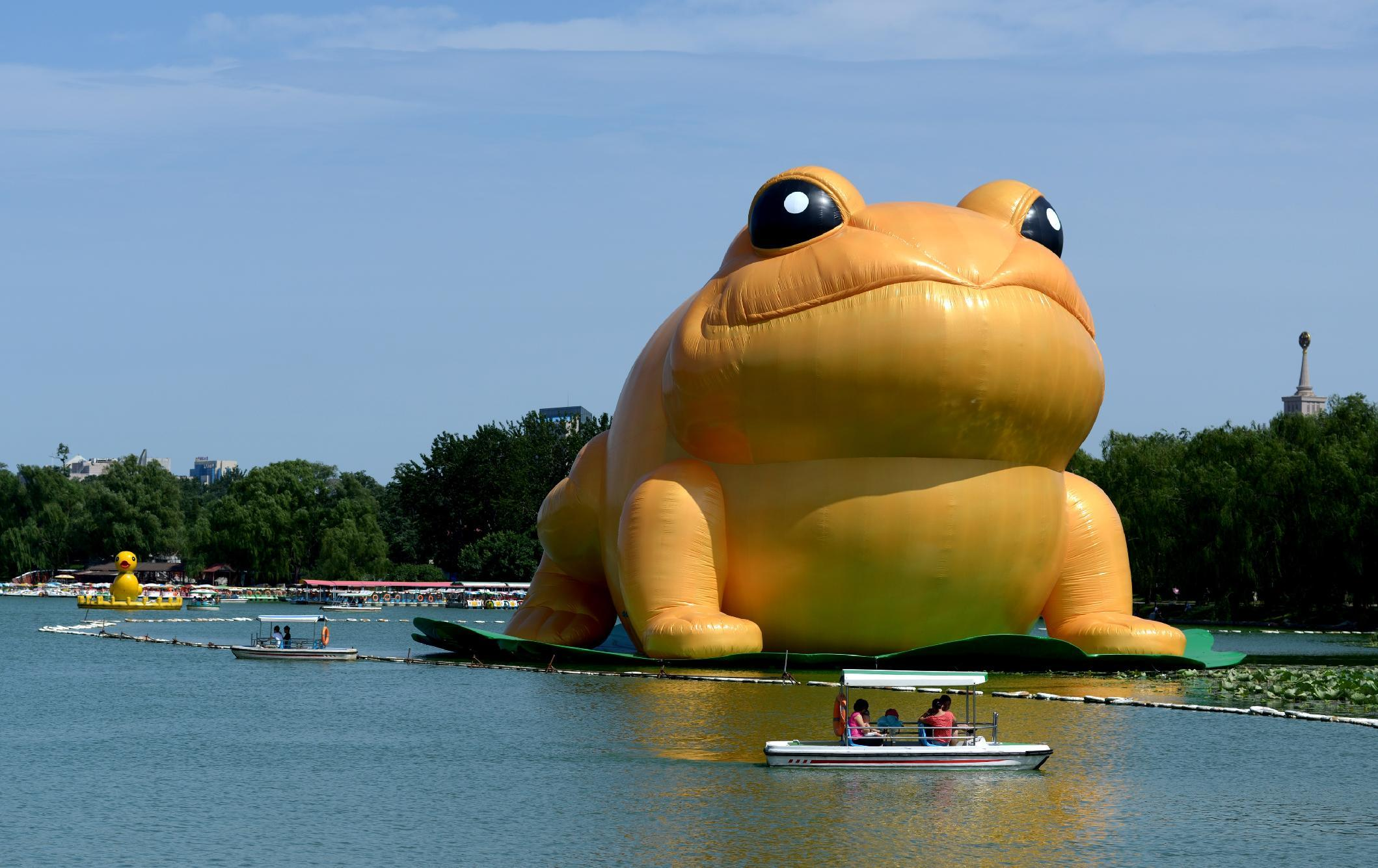 A 22-metre-high inflatable toad at Yuyuantan park in Beijing, on July 21, 2014 (AFP Photo/Wang Zhao)