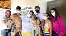 Michelle Bolsonaro adota dois cachorros e mostra novos integrantes da família no Instagram