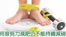 營養師Mian Chan:為何很努力減肥仍不能持續減磅?