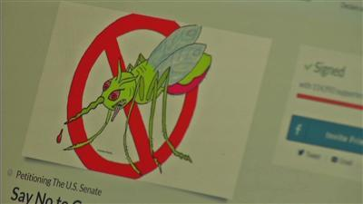 Controversy over genetically-altered mosquitoes
