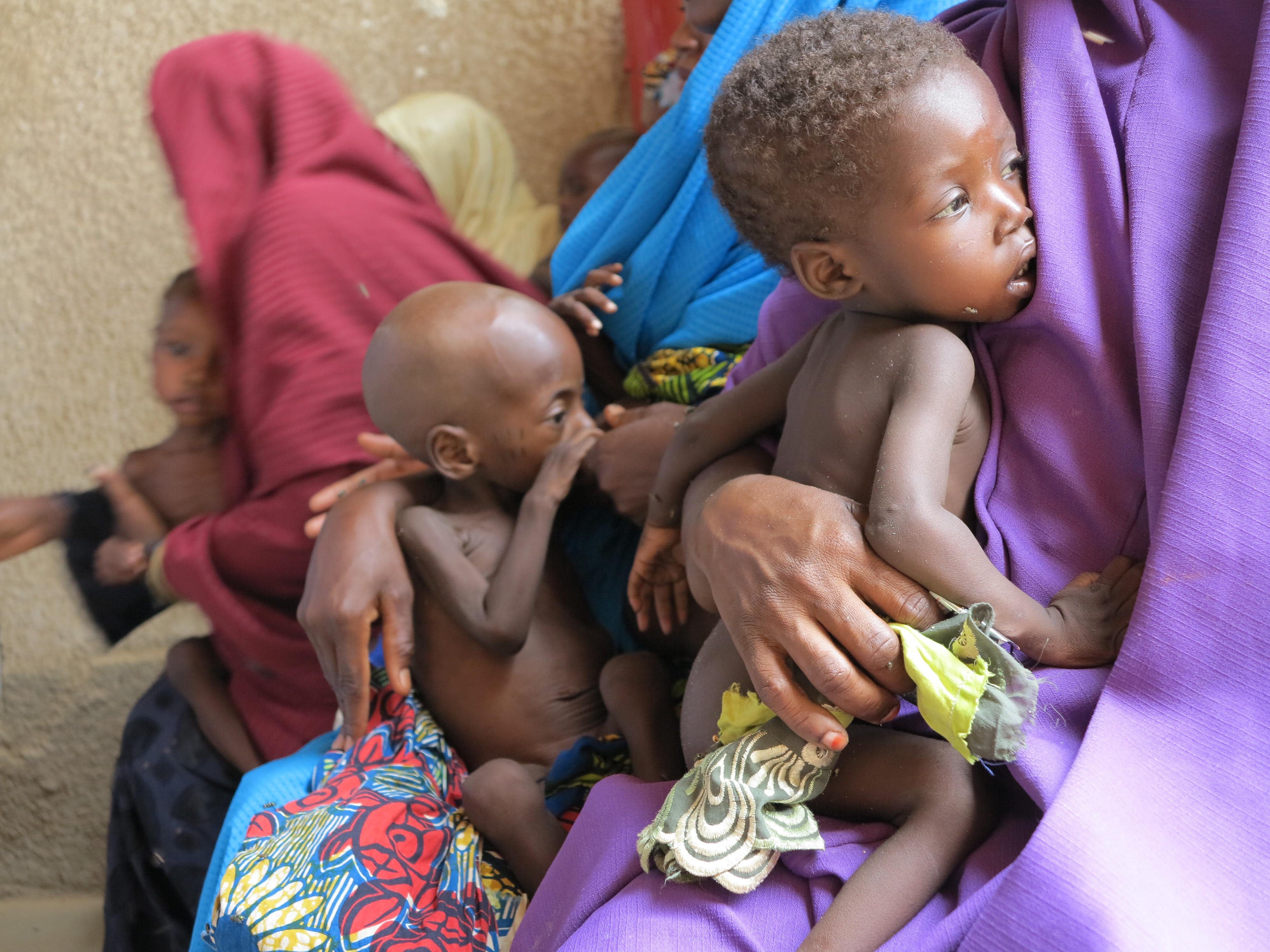 Boko Haram Has Left 250,000 Children Suffering from 'Severe Malnourishment'