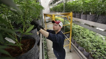 CBS passes on $5M Super Bowl marijuana ad
