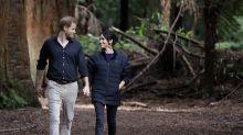 Prinz Harry veröffentlicht ein Foto von Herzogin Meghans Babybauch