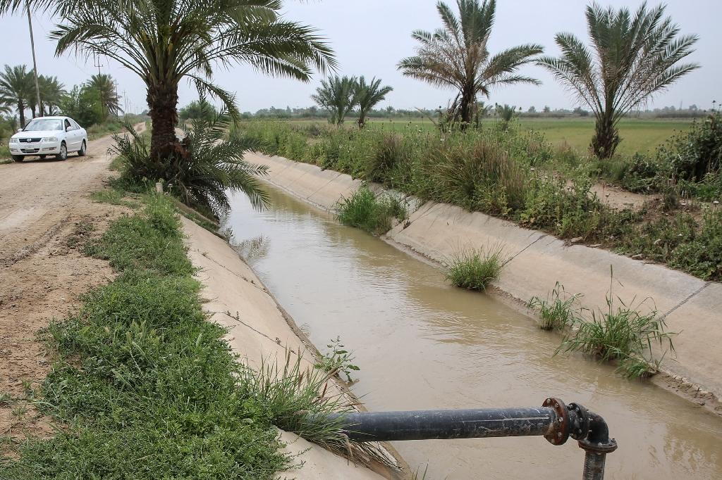 After plentiful winter rains, Iraq is heading into summer with overflowing reservoirs and lush marshes. But the country's water woes are not over (AFP Photo/SABAH ARAR)