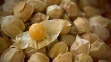 Esta fruta desconocida podría llegar a tu supermercado gracias al CRISPR