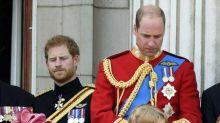 Prinz Harry überhäufte Prinz Williams Kinder mit üppigen Geschenken