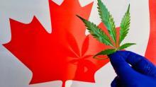 Better Marijuana Stock: Aurora Cannabis vs. Hexo Corp.