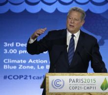 Al Gore: There's Still Time To Solve Climate Change Crisis