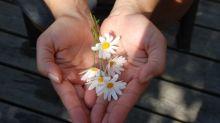 Segundo estudo, ser generoso é o segredo para a felicidade