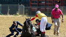 3-year-old filly Congrats Gal collapses, dies after Miss Preakness Stakes race