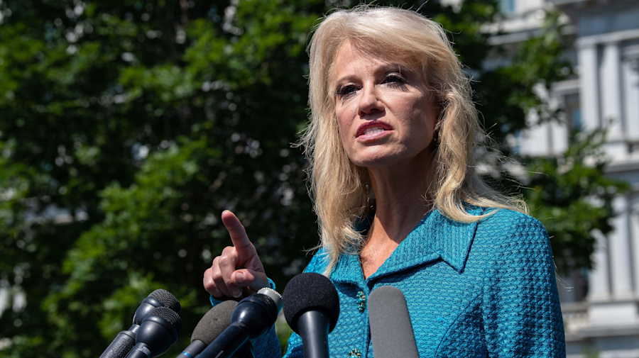 Conway to reporter: 'What's your ethnicity?'