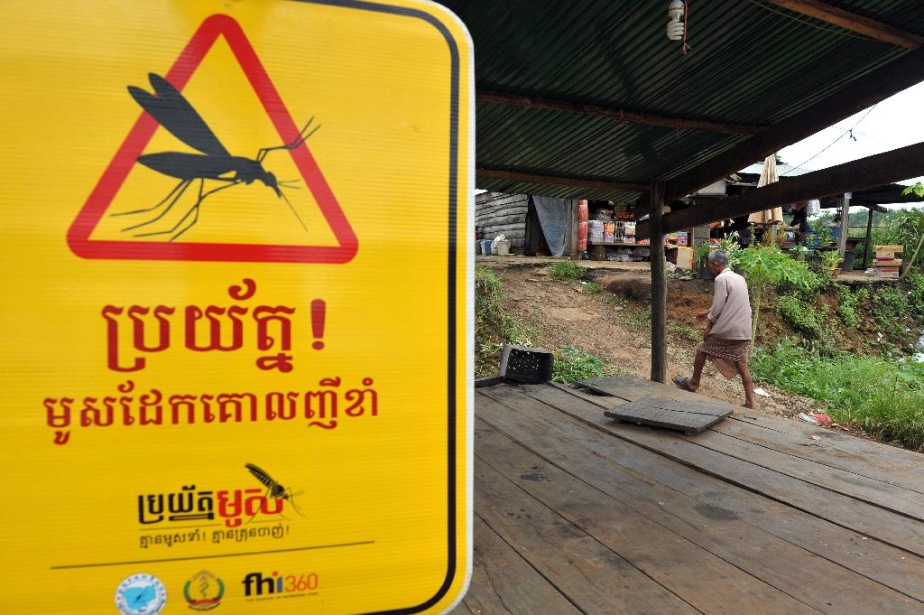 The emergence of malaria strains resistant to artemisinin derivatives, first detected in Cambodia in 2008, has seriously undermined the global fight against the deadly virus