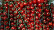 Índice de preços globais de alimentos sobe pelo 3º mês seguido, diz FAO
