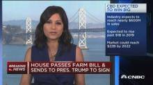 Farm bill may be big win for hemp-based product manufactu...