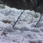 Snow levels reach lower elevations in Madera County