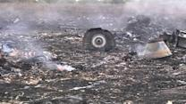 Malaysian airliner downed in Ukraine war zone, 295 dead