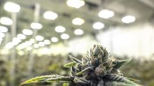 Commercial real estate booms in cannabis-friendly states