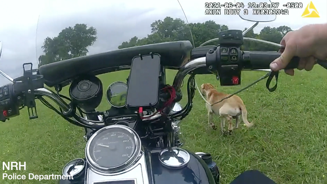 Watch North Texas police officers use 'incredible' motorcycle skills to help rescue dog
