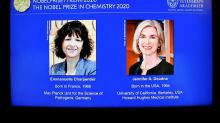 US-French duo win Nobel Chemistry Prize for gene editing tool